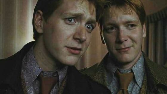 The ultimate question: are you Fred or George? Take your pick of some tricky situations and find out which of these famous trickster twins you are!