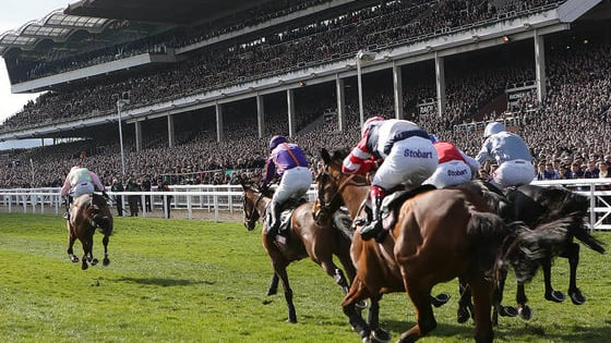 Try your luck with our Cheltenham quiz and fill out the form below to enter with multiple chances to win free bets for Fridays racing at Cheltenham.