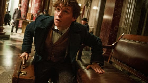 A brand new featurette for Fantastic Beasts and Where to Find them has just been released on Pottermore, and we are SCREAMING.