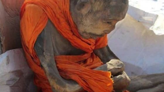 "A mummified monk found in lotus position and covered in cattle skin, was claimed ""not dead"" but in a very deep meditation by a Buddhist academic. The remains, which is believed to be around 200 years old was found on January 27 in the Songinokhairkhan province of Mongolia.  http://www.dailyviralpost.com/"