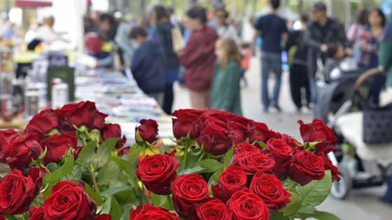 Sant Jordi és de les festes més estimades del país. Et proposem que facis aquest joc per veure si la coneixes a fons