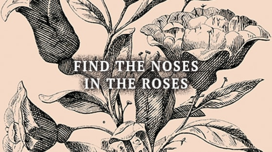 People are losing their minds again over this baffling hidden image puzzle. Can you spot all of the noses hidden among the roses? We found 6 faces. Did we miss some more? Take the challenge!