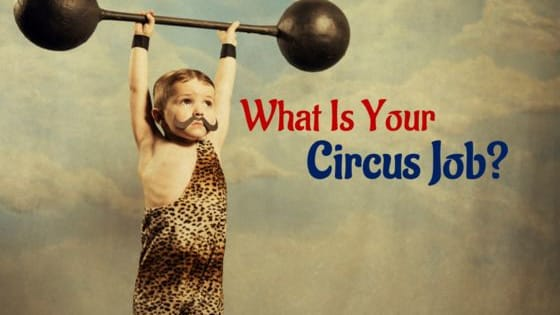Find out what you would do in the circus according to your personality!