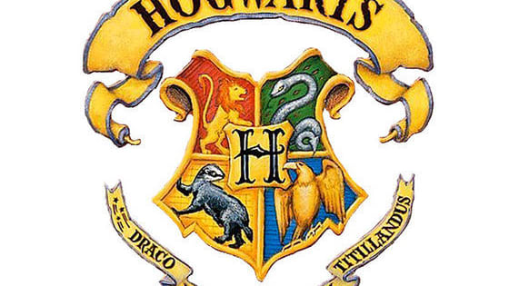 Gryffindor, Ravenclaw, Hufflepuff or Slytherin. Today you will find out what house you belong in.