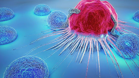 Information about cancer and the body.
