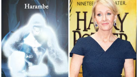 The new Pottermore patronus quiz has fans all over the internet talking! But J. K. Rowling was forced to get on Twitter to tell people that one animal in particular would not be a patronus option.