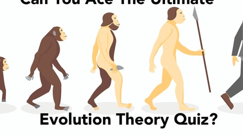 How much do you know about human evolution according to Charles Darwin?