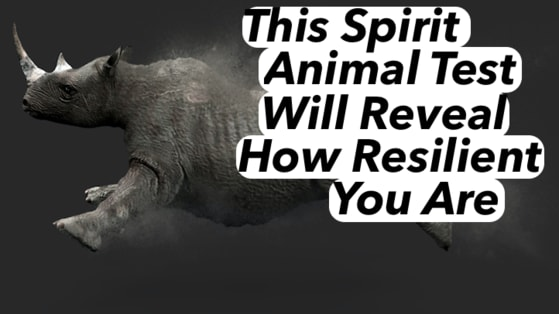 Spirit animals aren't just cuddly ethereal creatures they hold special powers. Your spirit animal will be able to tell you many things, like how resilient you are! Take this quiz to find out.
