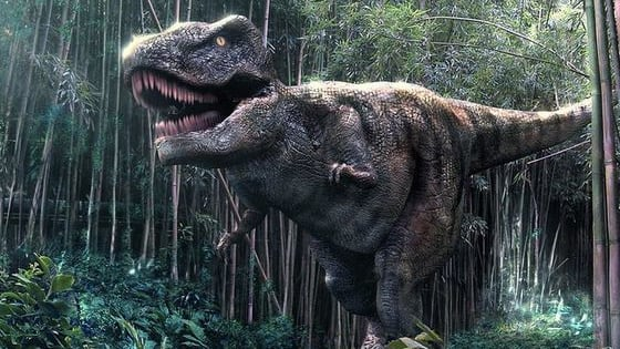 Discover what fearsome pre-historic reptile lies within!
