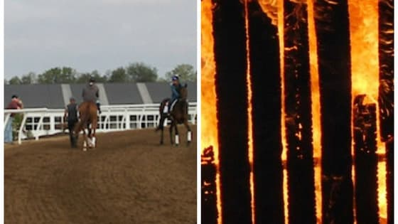 When a fire broke out around 1 am Monday, December 19, in one of the barns at Mercury Equine Center in Lexington, KY, only one third of the horses were able to be rescued. Now the cause is under investigation. What do you think happened?