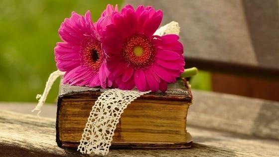 Choose an image, read a passage!