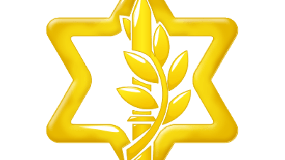 Test your history with 17 questions about the history of the IDF. Can you guess them all?