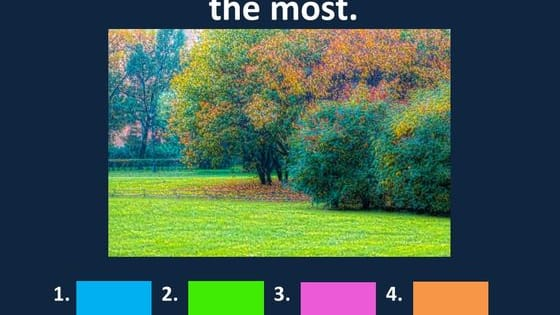 How does the way you see colors determine who you really are?