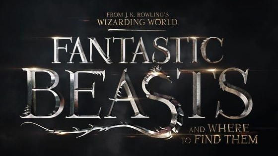 Find out which character  you are from the movie Fantastic Beasts and Where To Find Them.
