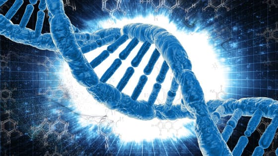 What's your DNA actually made up of? What's your ancient ancestry? Let's find out!