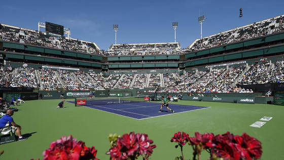 Take our quiz to test your knowledge on the Indian Well Masters, or also known as the BNP Parisbas Open.