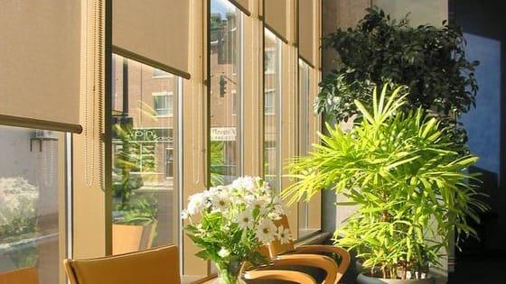 Modern Roller Blinds for sliding doors, french doors, kitchen bedroom etc.  Get more info about roller blinds for your home: https://www.ewfblinds.com.au/roller-blinds  Reference :- https://ewfblinds.joomla.com/ https://directory.com.au/detail/link-75788.htm