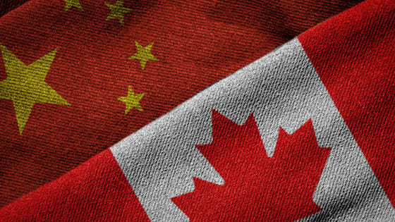 The world is closely watching as China, Canada, and its US ally are in a diplomatic rough and tumble. The results could be disastrous without caution. Let's take a look...