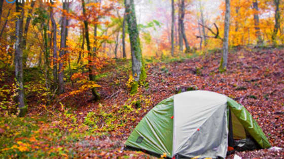 There's people that love camping and others that just associate it with bugs and bad sleep. It all depends on how and where you camp though, so take the quiz to find out where to connect with nature!