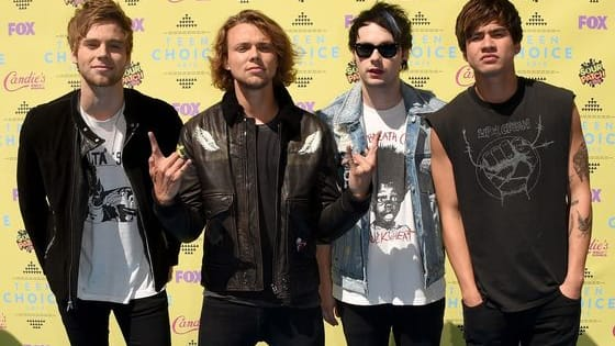 Are you an ultimate fan of 5SOS? Take this quiz to find out