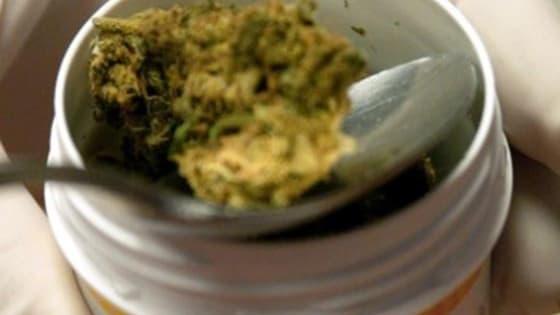 Se aproxima la marihuana legal al país