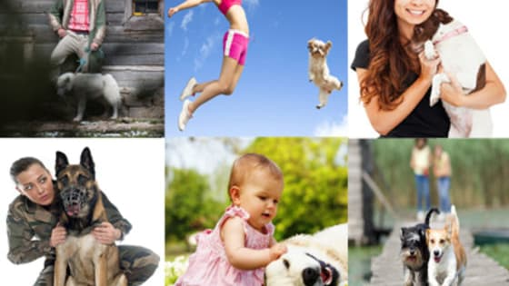 Discover which dog personality really is the perfect match for your ownership style in this fun 10-question quiz!