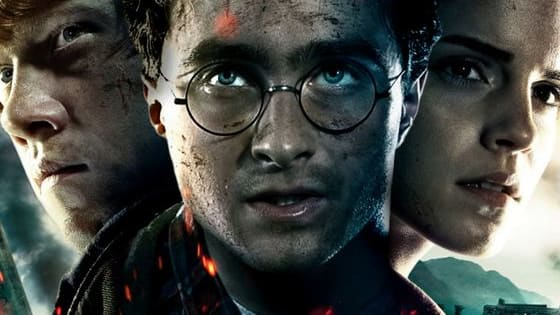 Which Harry Potter character befits your personality best ?  Find out by taking this quiz !
