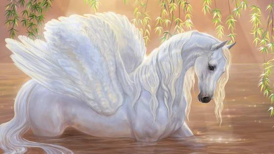 Are You a Pegasus, Unicorn or Alicorn?