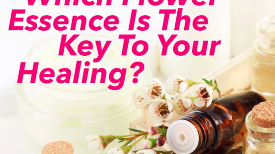 Flower scents are powerful healers, which one do you need?