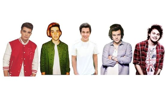 Is It Harry Styles, Austin Mahone, Tyler Wilson, Josh Cuthbert Or Michael Clifford? Find Out Now...