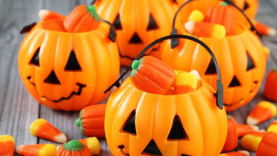 With so many great traditions for the season, which Halloween tradition is the most like you?
