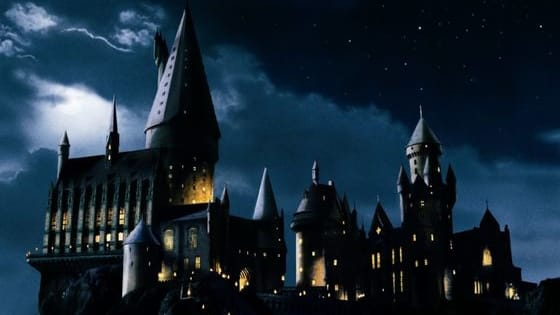 Do you think you know Harry Potter? Try this to put your knowledge to the test. Post in the comments below how you did!!