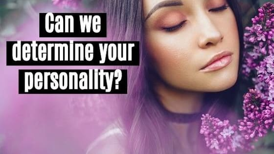 This 10-question test will accurately determine your type and define your dominant traits.
