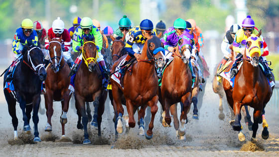 Are you a dark horse or a front runner?  Find out and let the race begin!