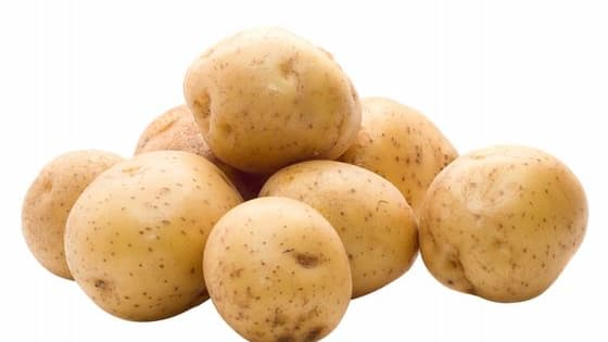 The name's Potato, HappyFruit Potato. Today, you will learn what potatoes think of you. Being the potato queen I am, I will tell you what to prepare for if you every come to the land of potatoes. Be warned, you might not be wanted...