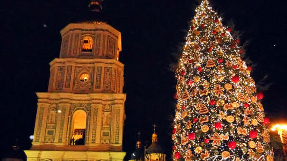 Are you ready for Ukrainian Christmas celebrations? Let's see.