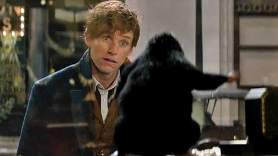 Discover which creature from 'Fantastic Beasts and Where to Find Them' you're most like NOW!
