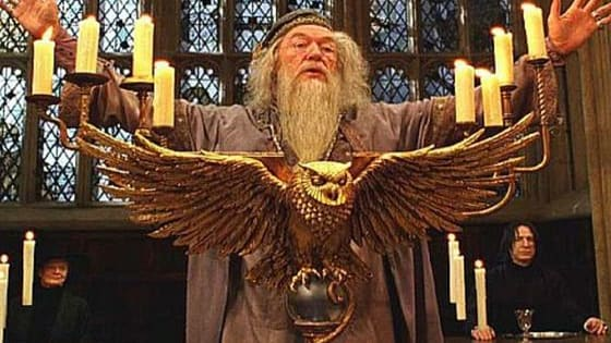 He may be one of the most powerful wizards ever, but you gotta admit, Dumbledore's got style...