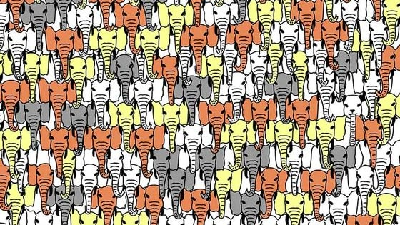 How fast can you find the hidden Panda in this herd of elephants? Have fun!