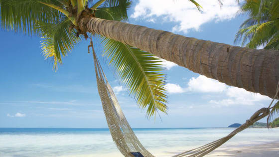 Find out which Spotify playlist is perfect for your next vacation by taking this quiz!