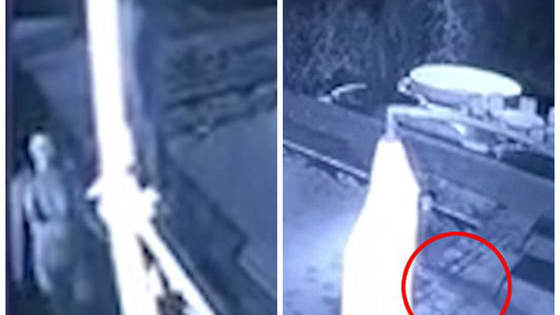 CCTV footage posted to Youtube shows the sudden attack and the couple's entire fight to survive.