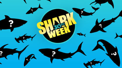 Celebrate 30 years of Shark Week on Discovery Channel with thirty incredible facts you may not know about these magnificent creatures 🦈  Don't miss Shark Week's 30th Anniversary starting on July 22nd.