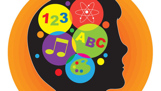 Howard Gardner proposed that there were eight different types of intelligences out there.. Historically in schools, logical-mathematical and linguistic intelligence were the only types of intelligence's that were tested. Slowly, as Gardner's theory gains more impact in the educational community, the less-understood intelligence's are beginning to emerge. As he said, it's not how smart you are, it's how you are smart. Find out which type of intelligence is dominant in you!