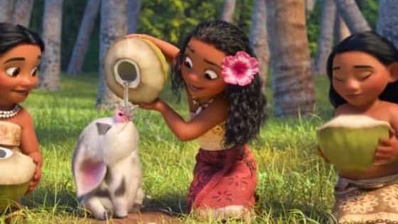 Are you the energetic Anna or the hard working Tiana? Find out here!