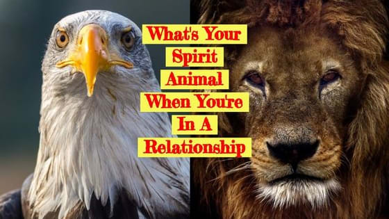 In nature, everyone and everything is linked between each other. Therefore, you are connected to animals just as they are connected to you. This test will accurately determine which animal you are when you're in love.
