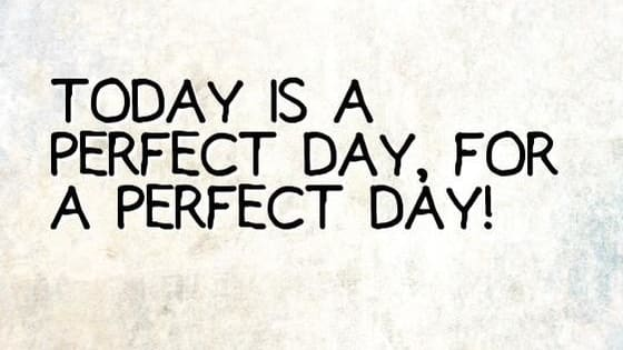 Play to find out your ideal perfect day.