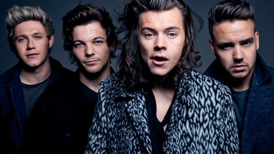 The One Direction lads sometimes don beards, but which 1D member sporting some facial hair are you?