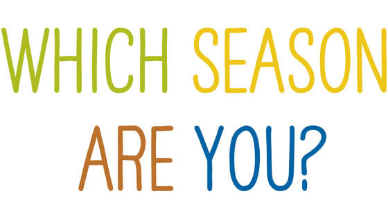 Which Season Should You Take Your Senior Portraits?