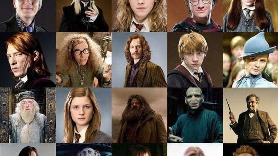 Not which Harry Potter character are you most like, which Harry Potter character would you enjoy most as your sibling. You may be most similar to Harry Potter, but it may be most fun for you to have Voldemort as a sibling.