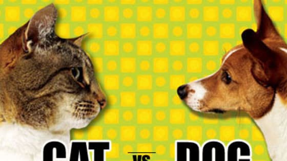 Which of man's best friends will win the votes?